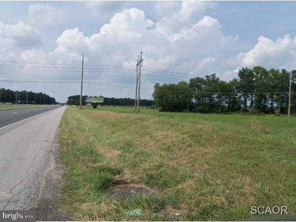 Milford DE Building Lots, Land & Acreage Real Estate Sales - Route 113   For Sale