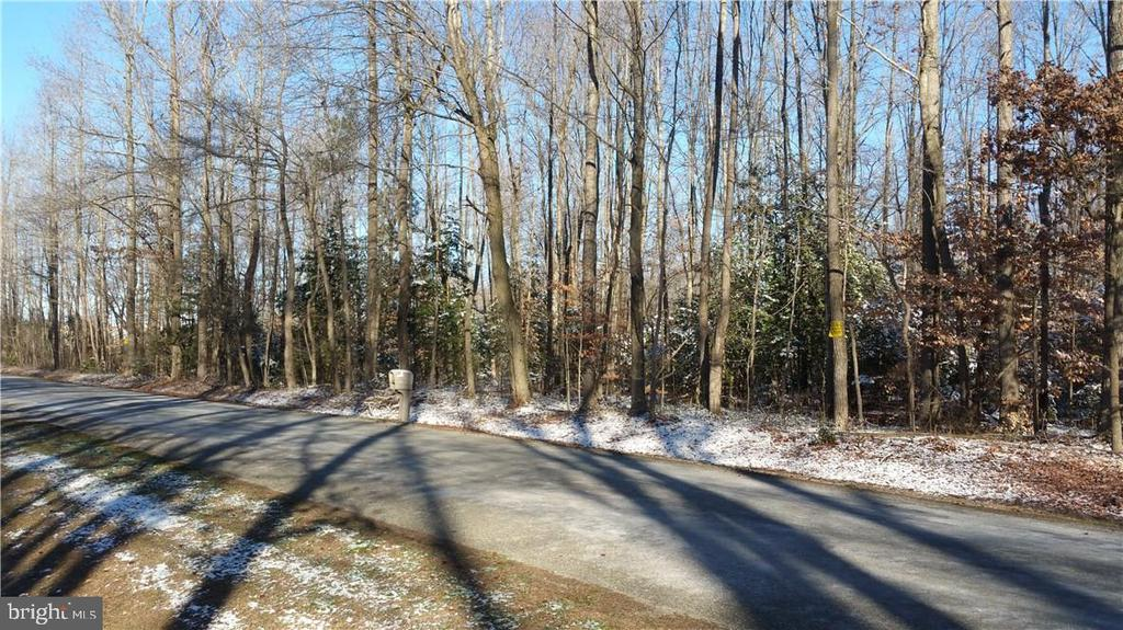 Harrington DE Building Lots, Land & Acreage Real Estate Sales - 18.3 Ac Staytonville   For Sale