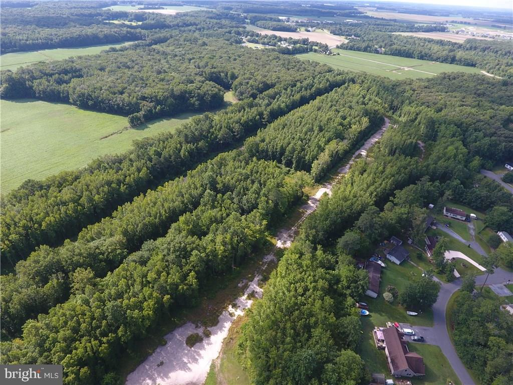 Selbyville DE Building Lots, Land & Acreage Real Estate Sales - 17 lots Hamden Park   For Sale