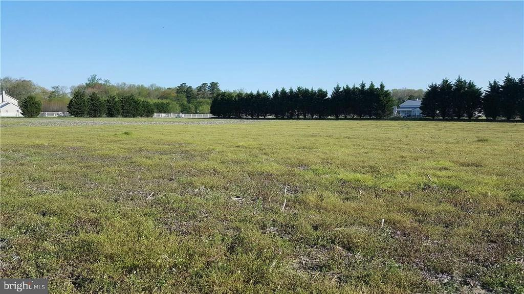 Lot 2 PINEY GROVEPINEY GROVE, Georgetown, Delaware