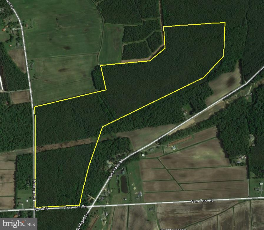 Millsboro DE Building Lots, Land & Acreage Real Estate Sales - Hickory Hill Road   For Sale