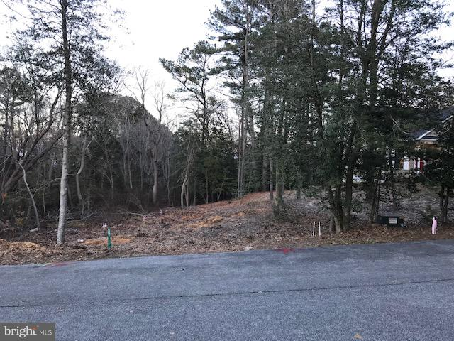 Rehoboth Beach DE Building Lots, Land & Acreage Real Estate Sales - 104 Munchy Shady Ridge  For Sale