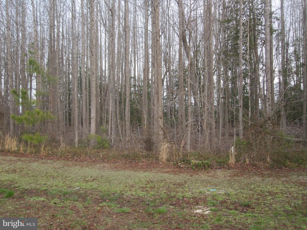 Milton DE Building Lots, Land & Acreage Real Estate Sales - 29649 Woodgate Woodgate  For Sale