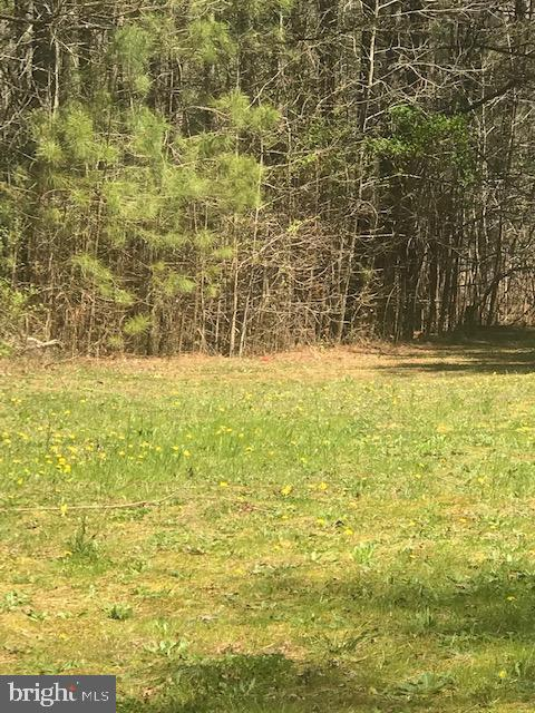 Dagsboro Lots and Land Real Estate Sales - Ajewell road   For Sale