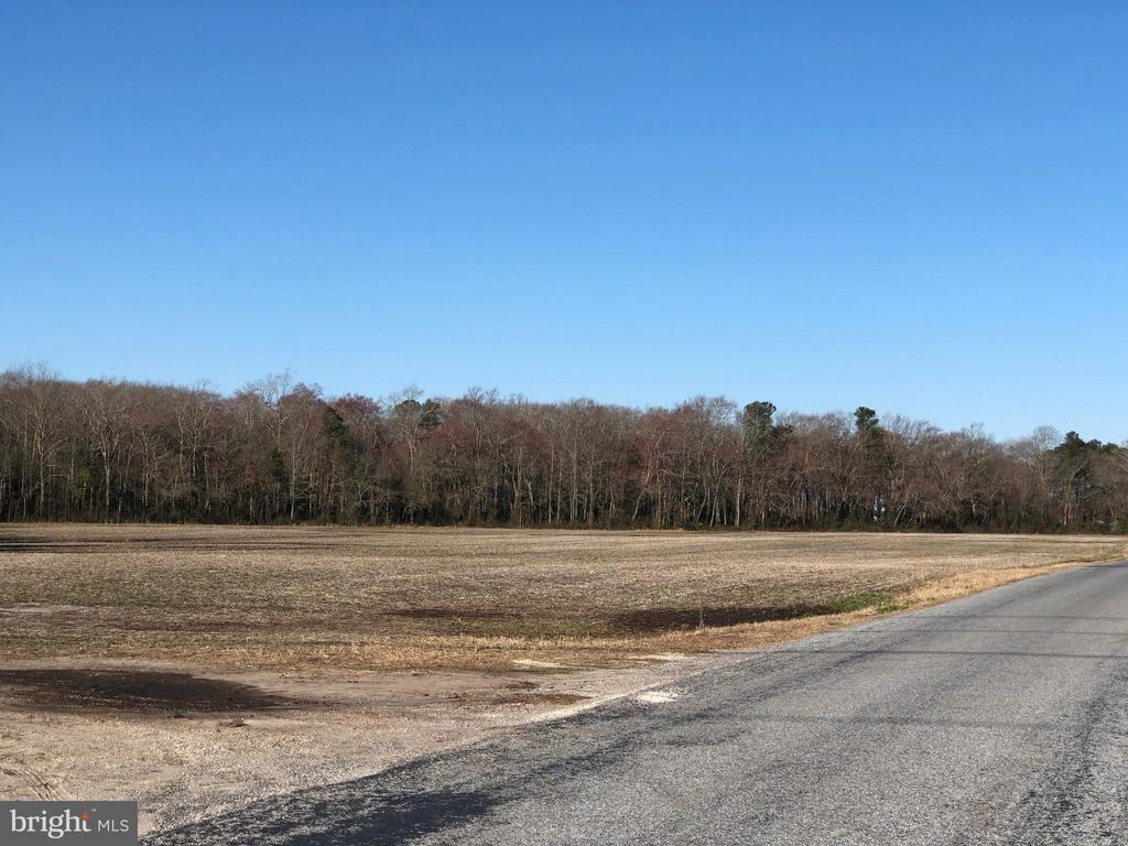 117.08 Acres DUPONT, Selbyville, Delaware