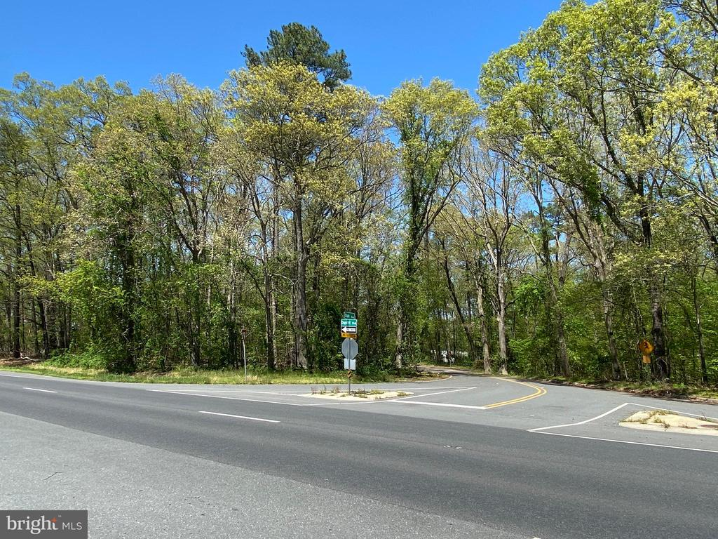 Millsboro DE Commercial Industrial Real Estate Sales - 28634 Oak Pine Lodge Addition  For Sale