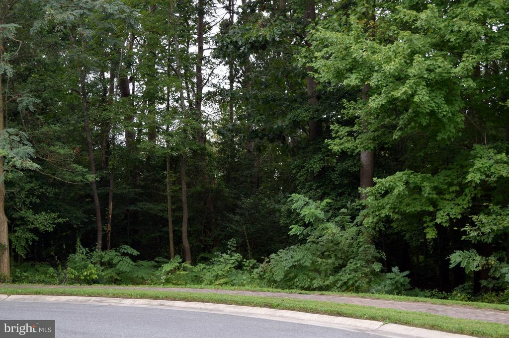 Milton DE Building Lots, Land & Acreage Real Estate Sales - 222 Chandler Preserve On The Broadkill  For Sale