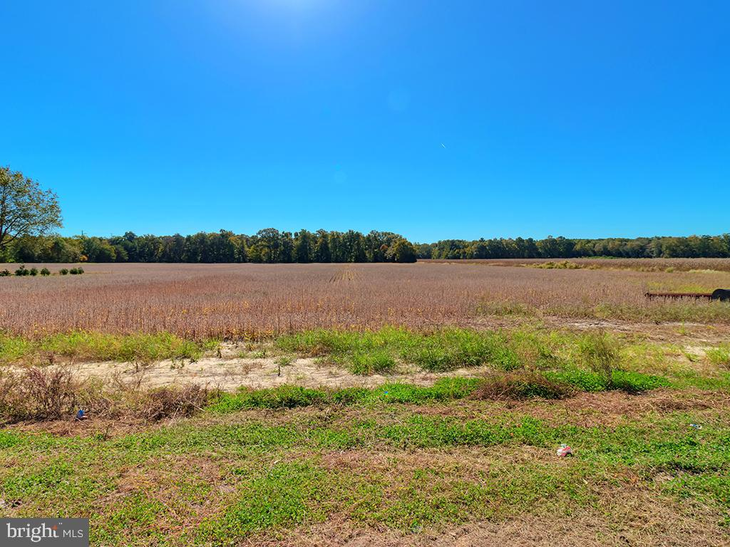 Millsboro DE Building Lots, Land & Acreage Real Estate Sales - Harmons Hill   For Sale