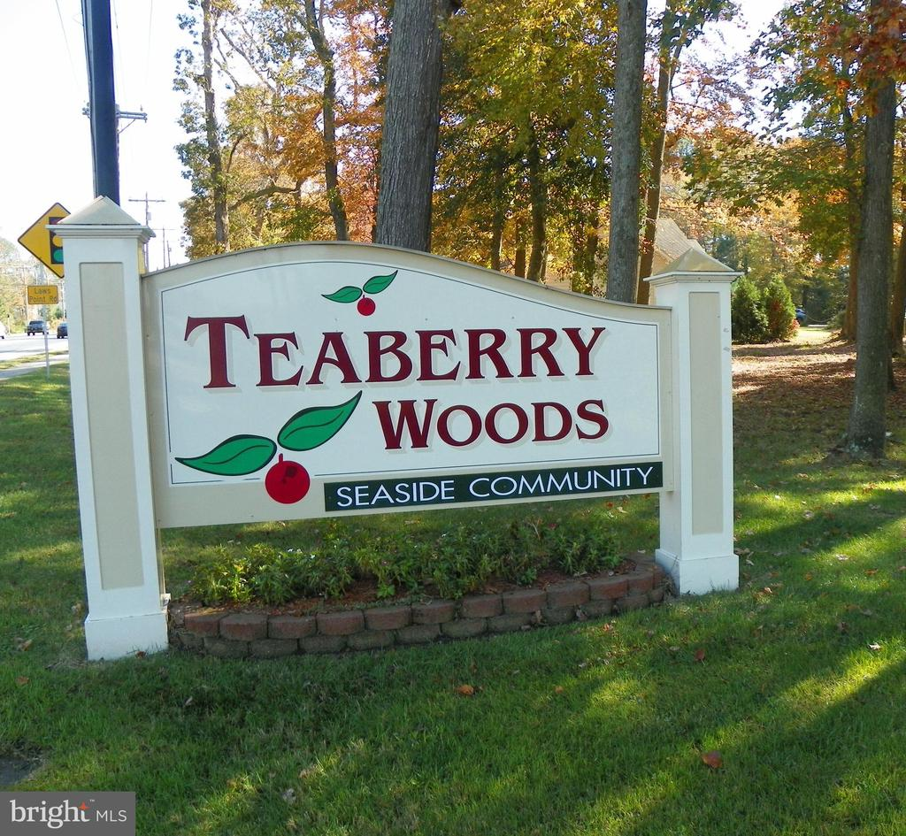 TEABERRY CIRCLE, Selbyville, Delaware